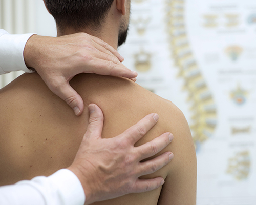 Chiropractors / Physiotherapy