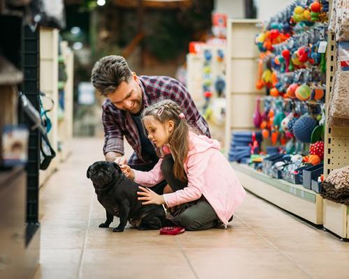 Pet Store / Grooming