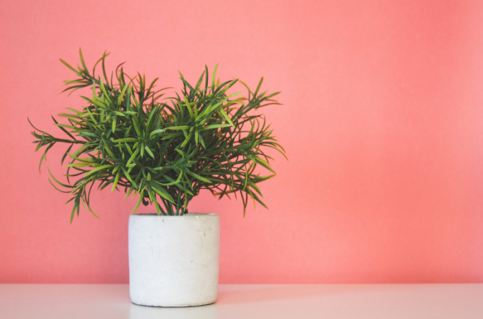 How to Use Marketing to Grow Your Business